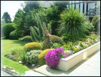 Plantas para jardines exteriores resistentes marina for Plantas de jardin resistentes