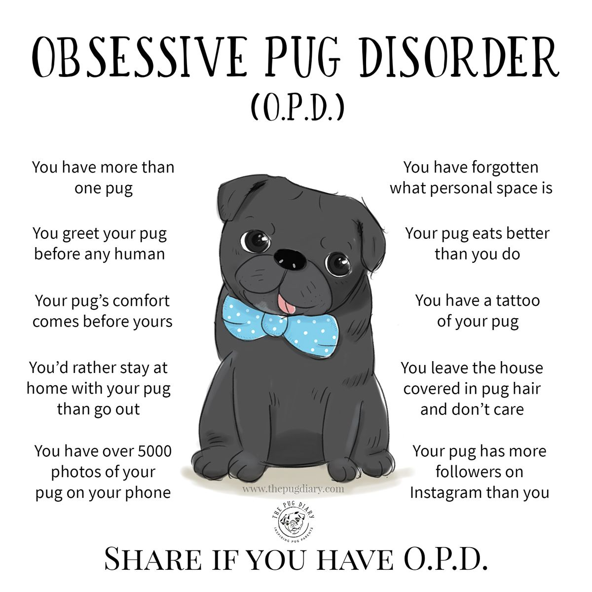 10 Signs You Suffer From Obsessive Pug Disorder Pugs Black Pug