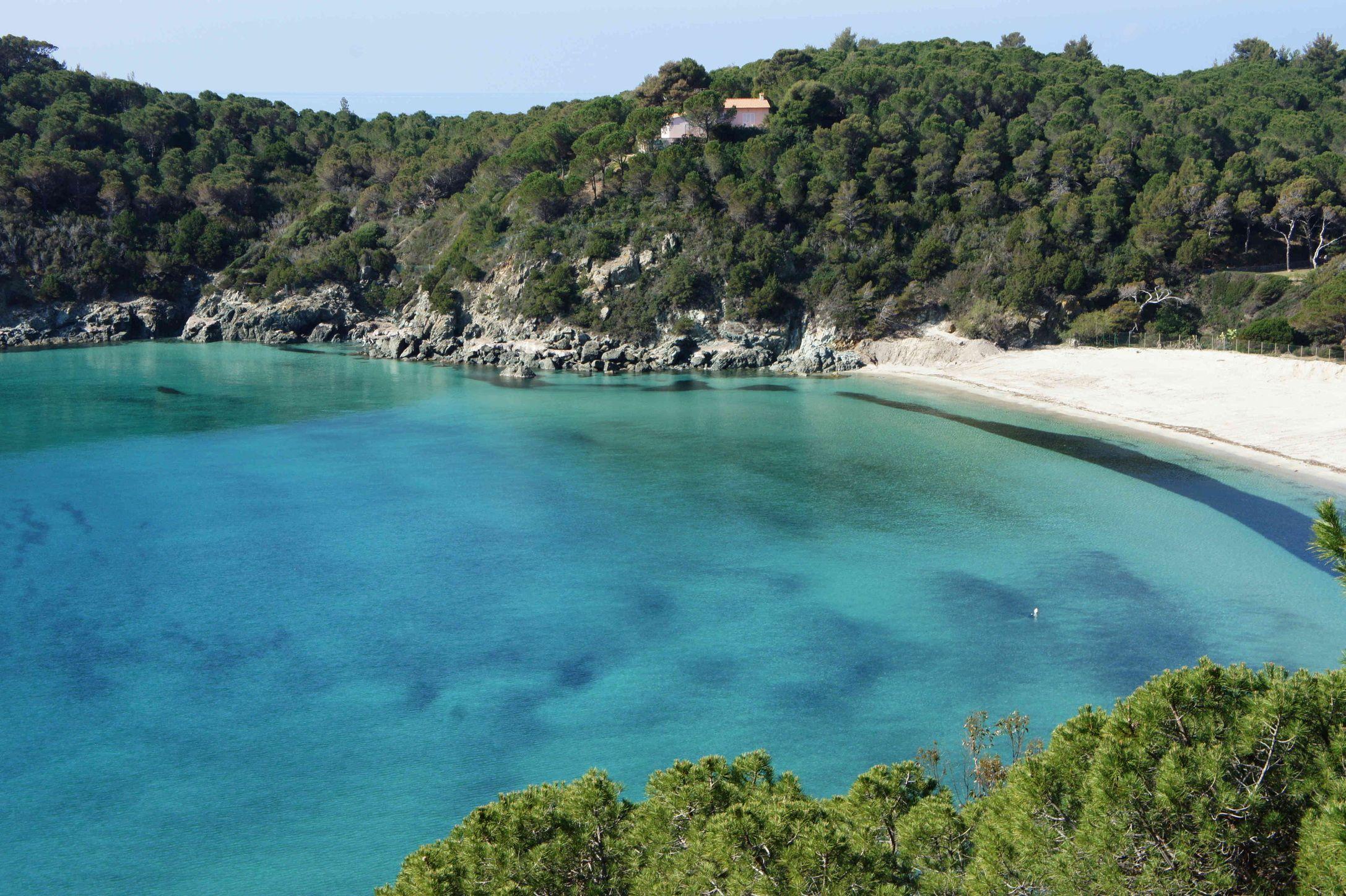 La spiaggia di Fetovaia(Campo nell'Elba) Spiagge, Luoghi