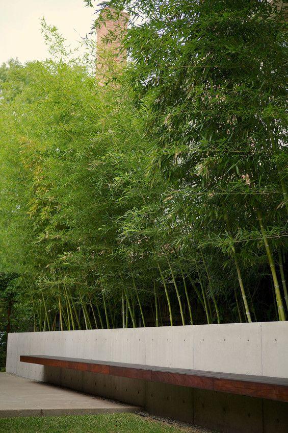 Larchmont Paisajismo, Diseño jardines y Bambú - diseo de jardines urbanos