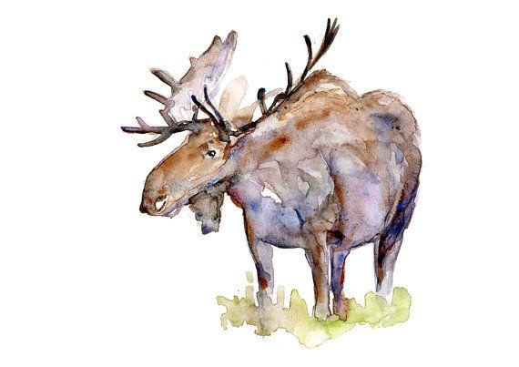 watercolor painting watercolor art watercolor animal Moose poster Illustration,home decor wall art Moose print Watercolor Print