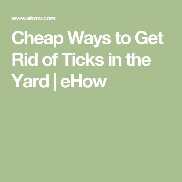 Cheap Ways to Get Rid of Ticks in the Yard | Sapling | Get ...