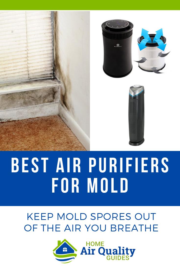 Best Air Purifier for Mold Spores, Viruses & Mildew
