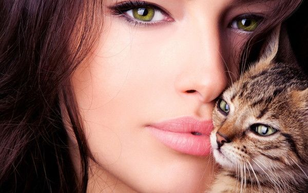 la brune et son chat