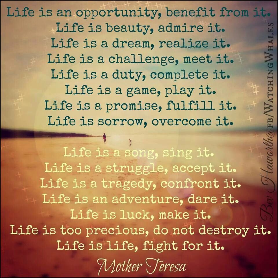 Life Is An Opportunity Benefit From It Inspirational Quotes