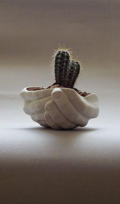 Céramiques modernes Succulent Planter Cactus Planter Office | Etsy