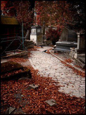 giulia garuti, autumn, otoño, paris, cementerio, hojas