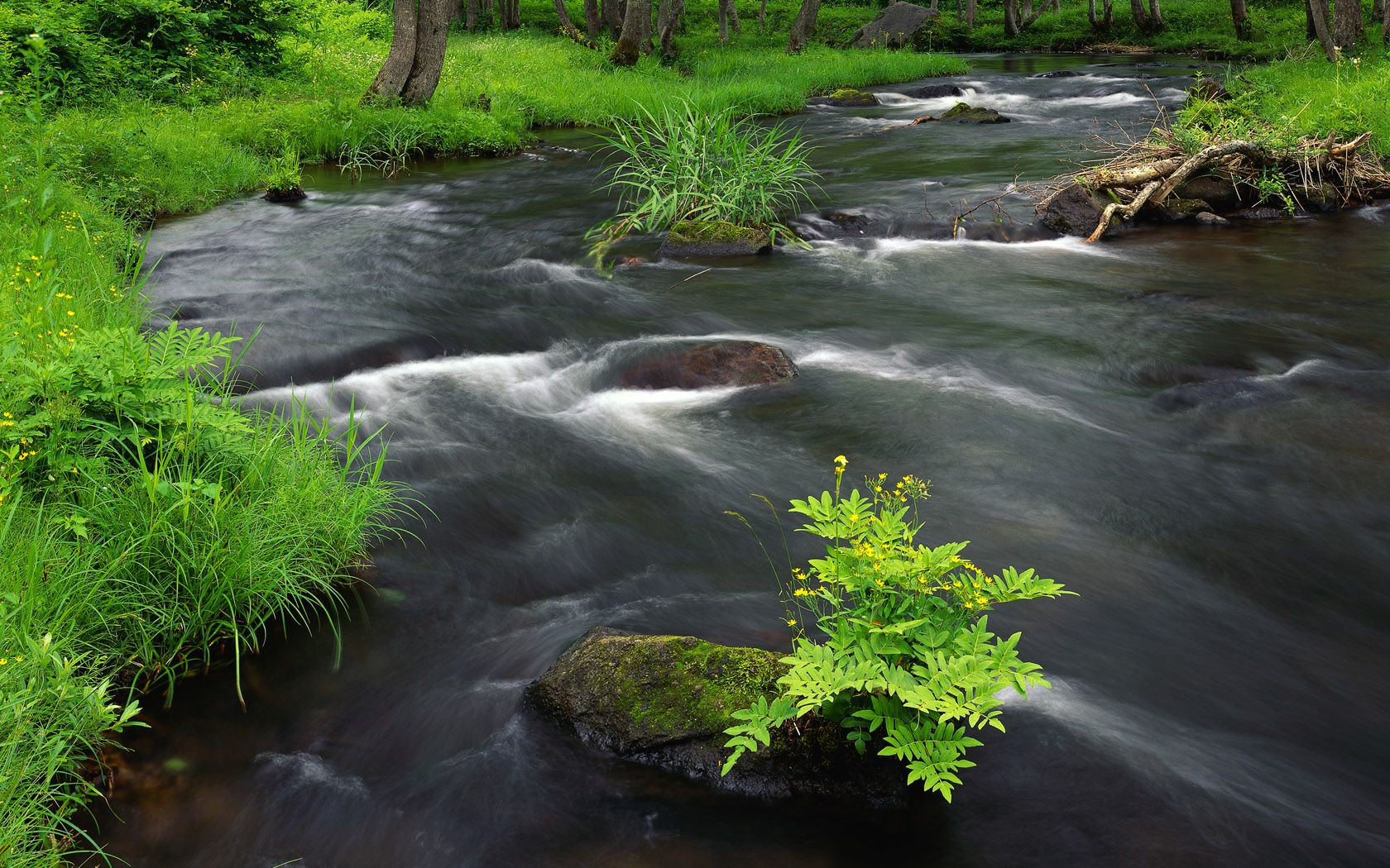 Click here to download in HD Format >>       River Across    http://www.superwallpapers.in/wallpaper/river-across.html