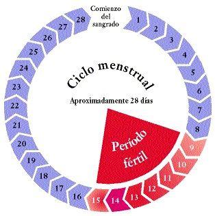 Sindrome Premenstrual Menstruacion Remedios Caseros Consejos Para La Salud