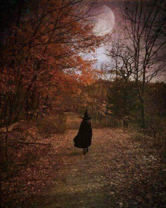 A Bewitching Reflection on the Season
