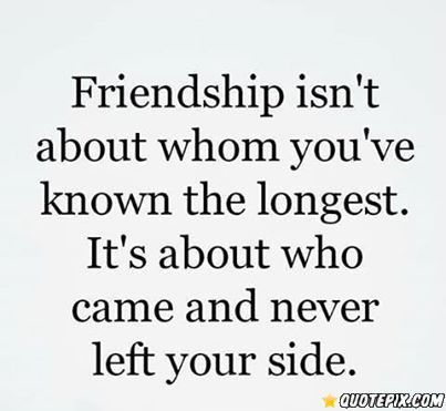 real meaning of friendship