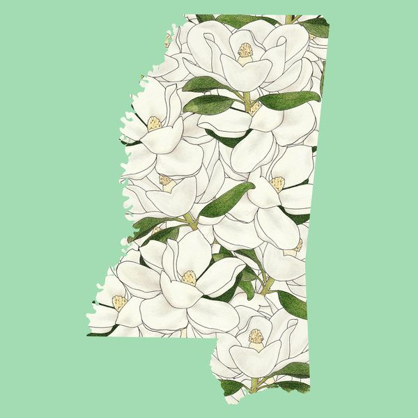 Mississippi In Flowers Art Print By Ursula Rodgers Flower Art Art Art Prints
