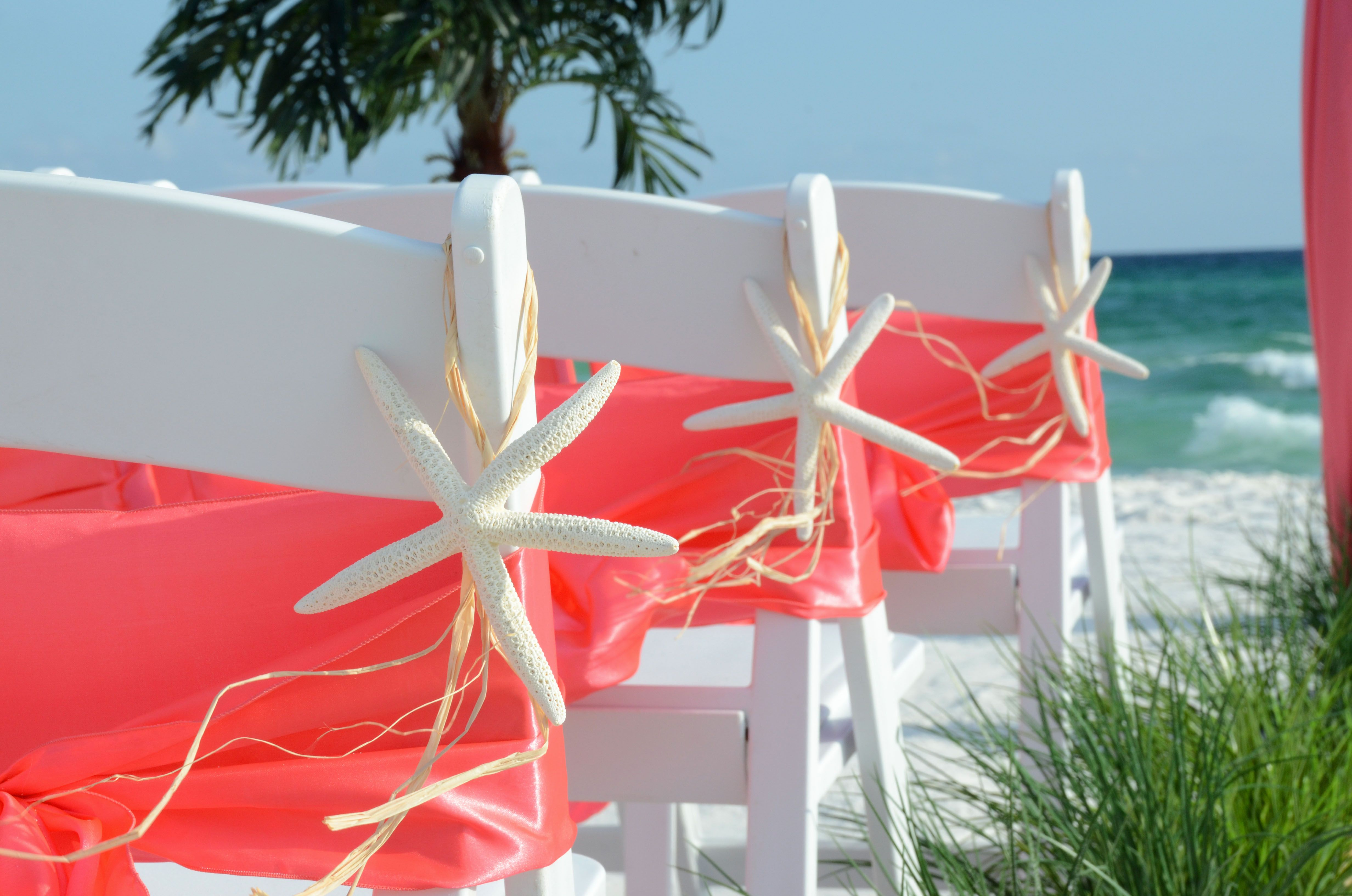 starfish wedding chair decorations pvc pipe chairs for kids hangers perfect your beach