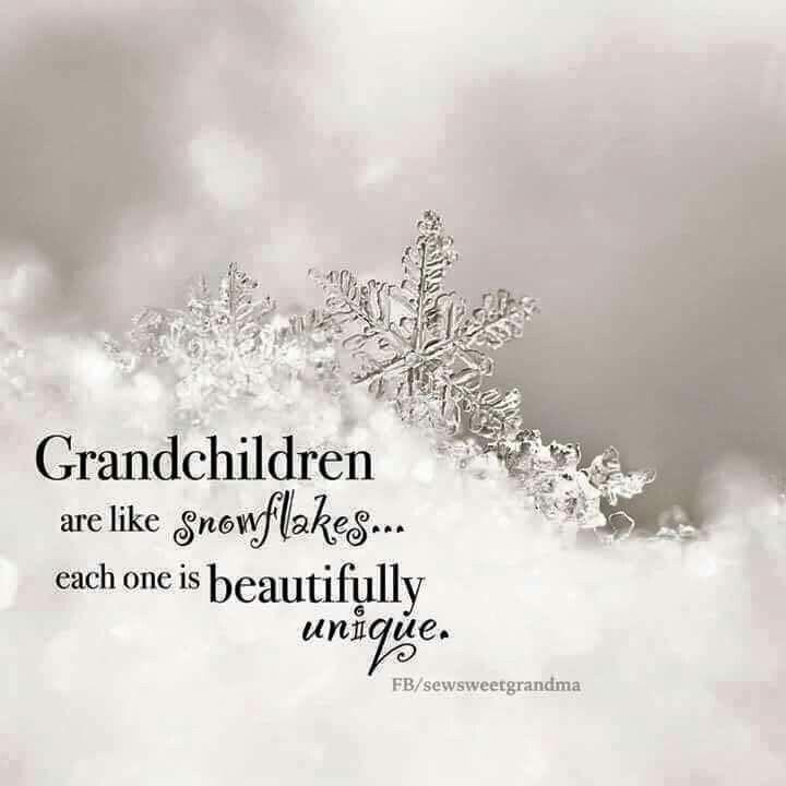 """Grandchildren Are The Crown Of Grandparents..."" Proverbs"
