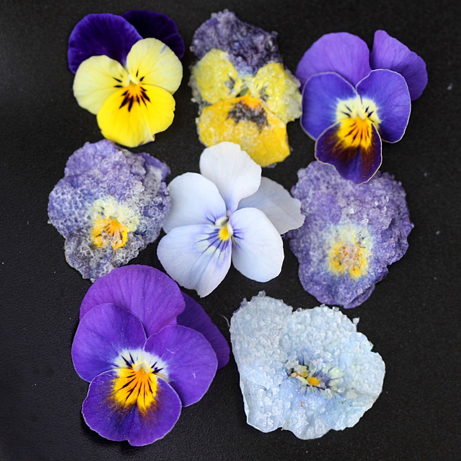 Crystallized violets cookingwithgifs edible cake
