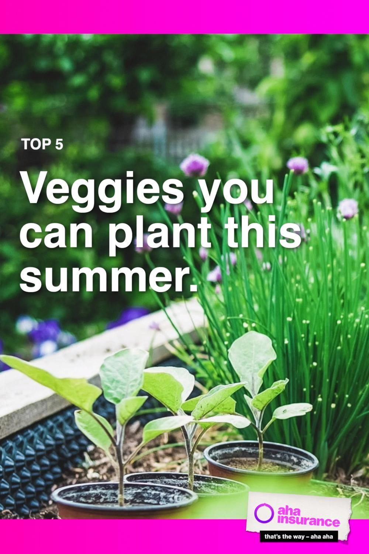bc5e4d400ec3a041c88d0a2e00668f3d - How Do Gardeners Make Money In Winter