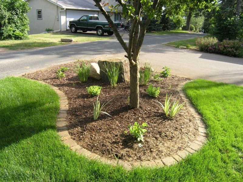 Inexpensive Landscape Edging Ideas : Lawn Edging Ideas To Keep Grass Out.  Lawn Edging Ideas To Keep Grass Out.