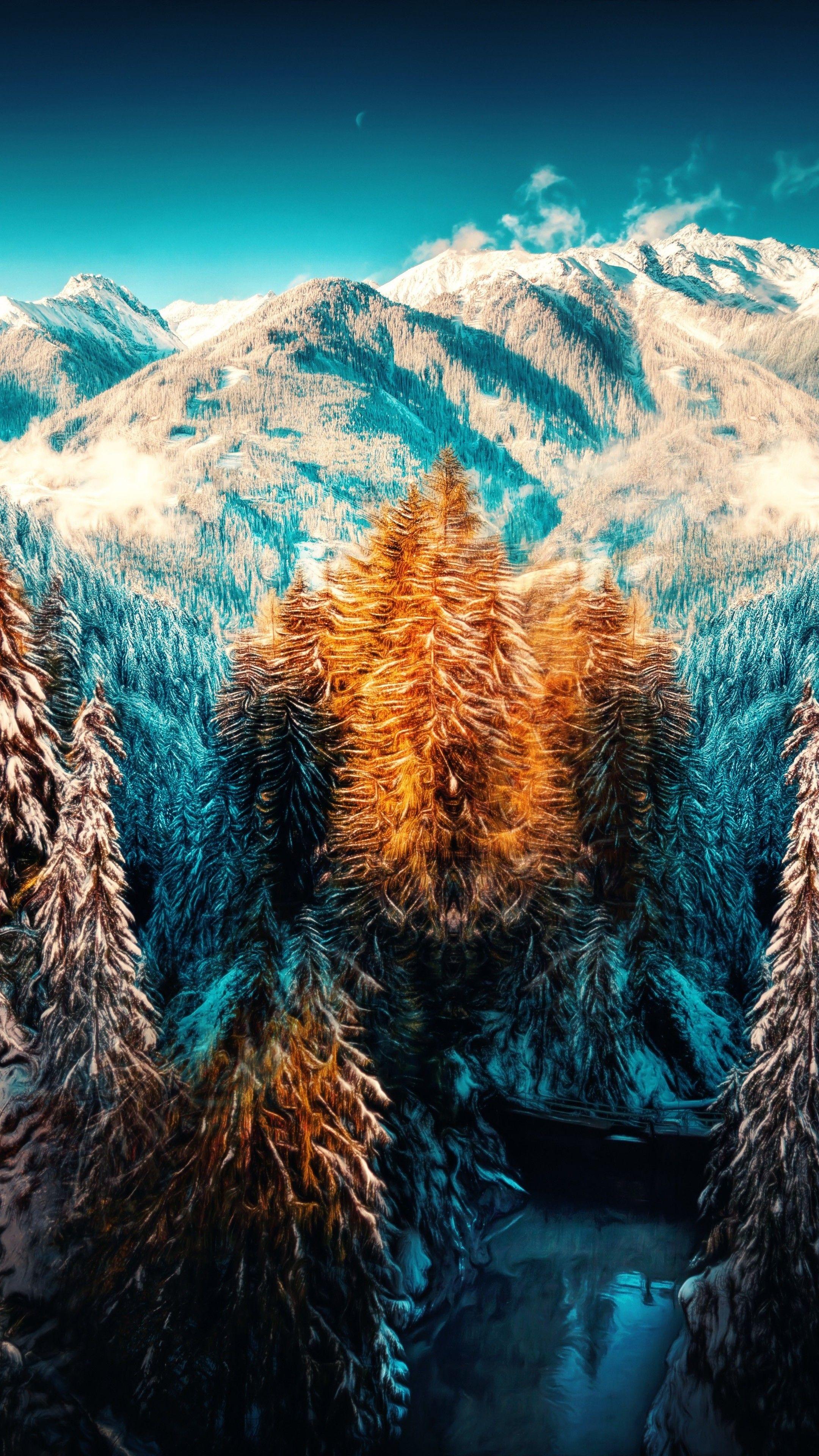 Nature Snow Landscape Mountains Trees Forest 5k
