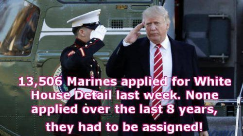 Marines know a Patriot when they see one and a coward when they smell one |TRUMP LAND aka OBAMA CARTOONS