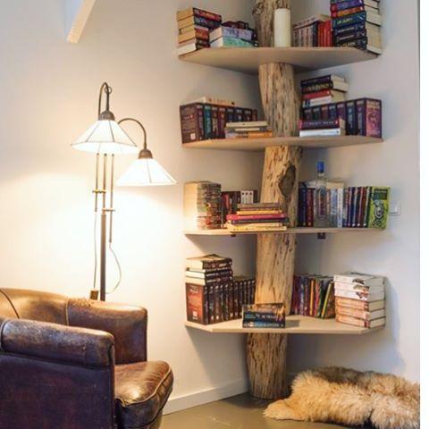 Um bom lugar para ler vários livros!!!! ❤ #frescurasdatati ...
