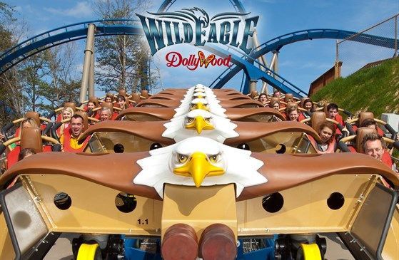 Hello, Dollywood! Wild Eagle Roller Coaster | Nearby