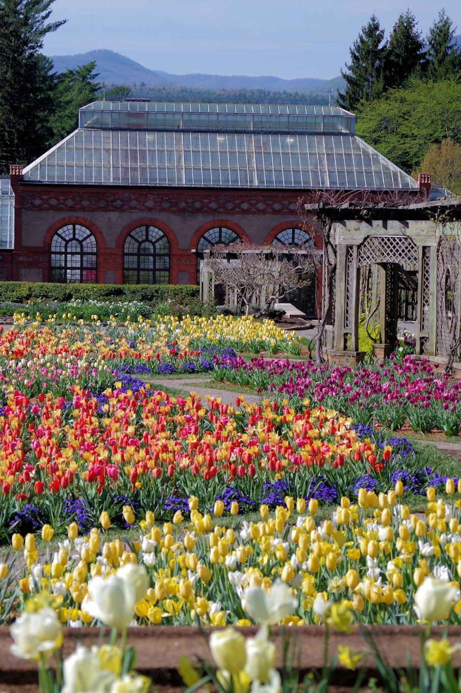 bc60b5eaa9c8ffb090c02e8bd31bd231 - Best Time To Visit Biltmore Gardens