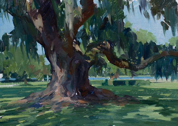 Plein Air Painting Of A Large Oak Tree Landscape Paintings Plein Air Paintings Nature Paintings