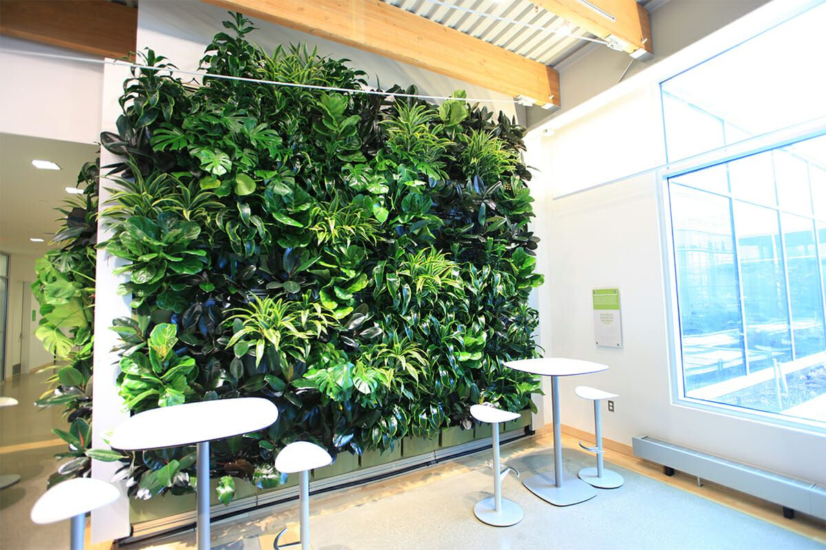 Grand Rapids Downtown Market Features A Green Wall The 400 x 300