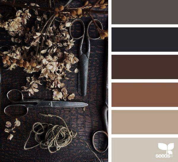 Welche Farbe Passt Zu Braun? Tipps Für Schöne