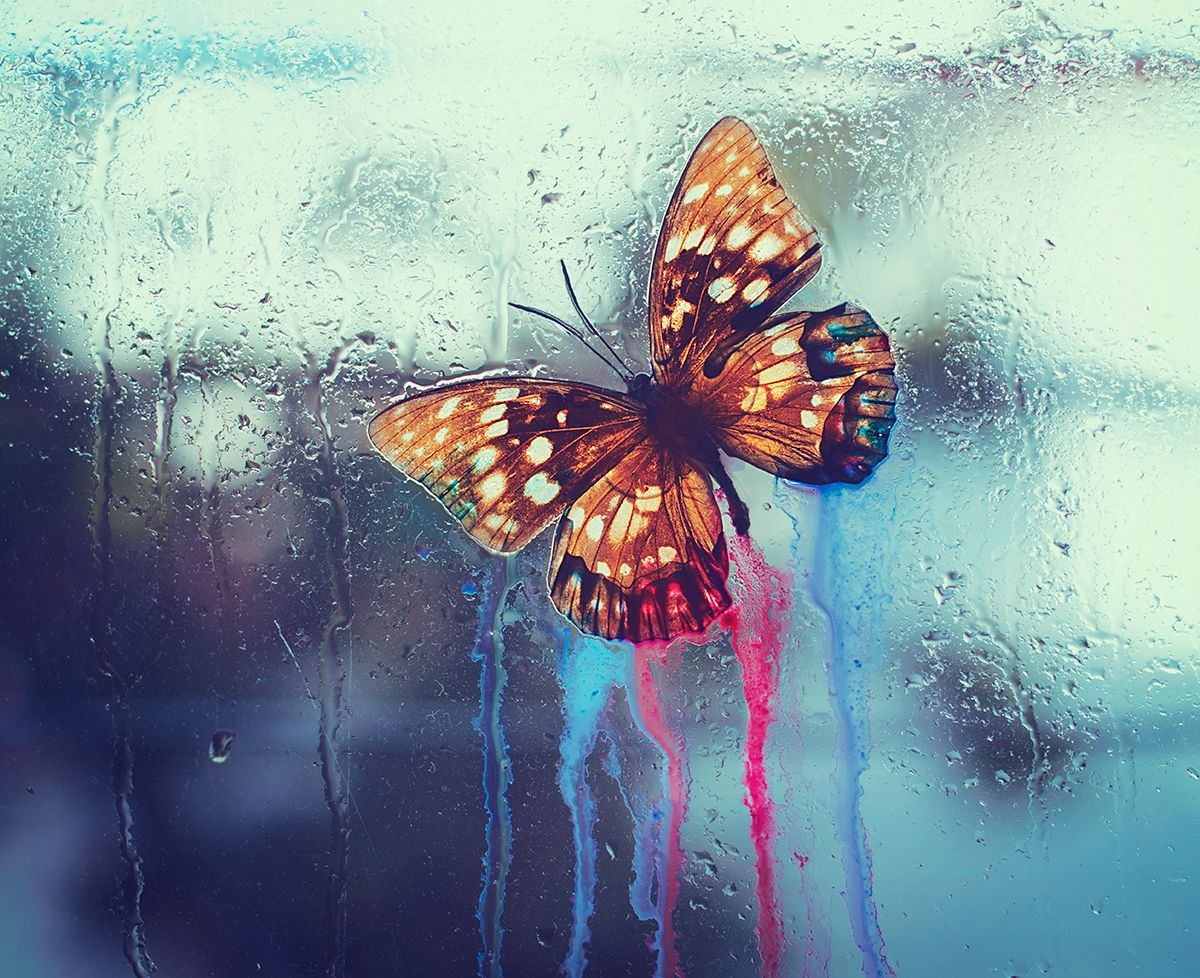 """The Loss"" — Photographer: Ashraful Arefin"