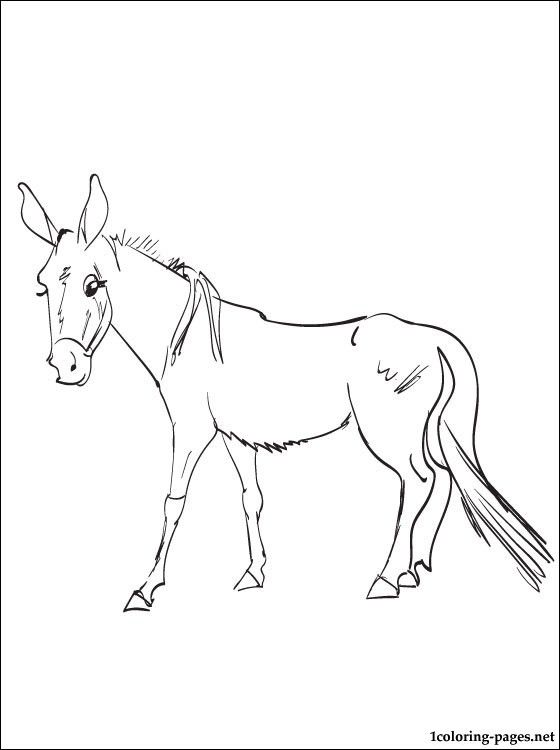 Mule Coloring Page Animal Coloring Pages Coloring Pages Animals