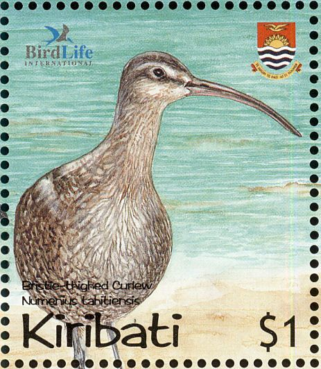 Bristle-thighed Curlew stamps - mainly images - gallery format