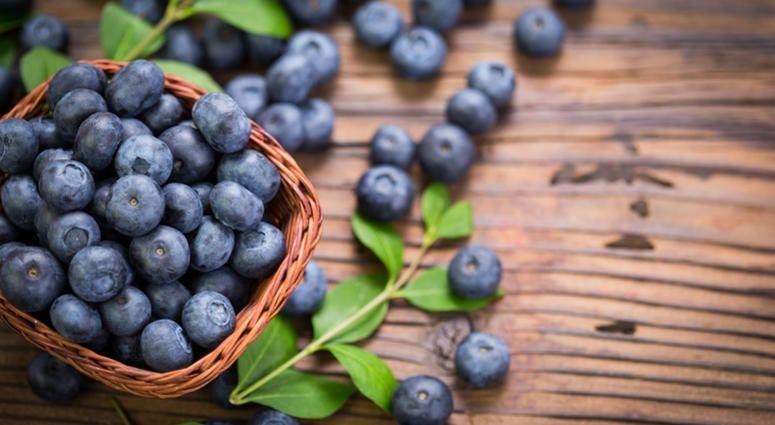 Dara moskowitz grumdahls top 5 blueberry recipes wcco