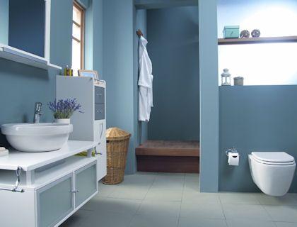 Photos On Blue bathrooms