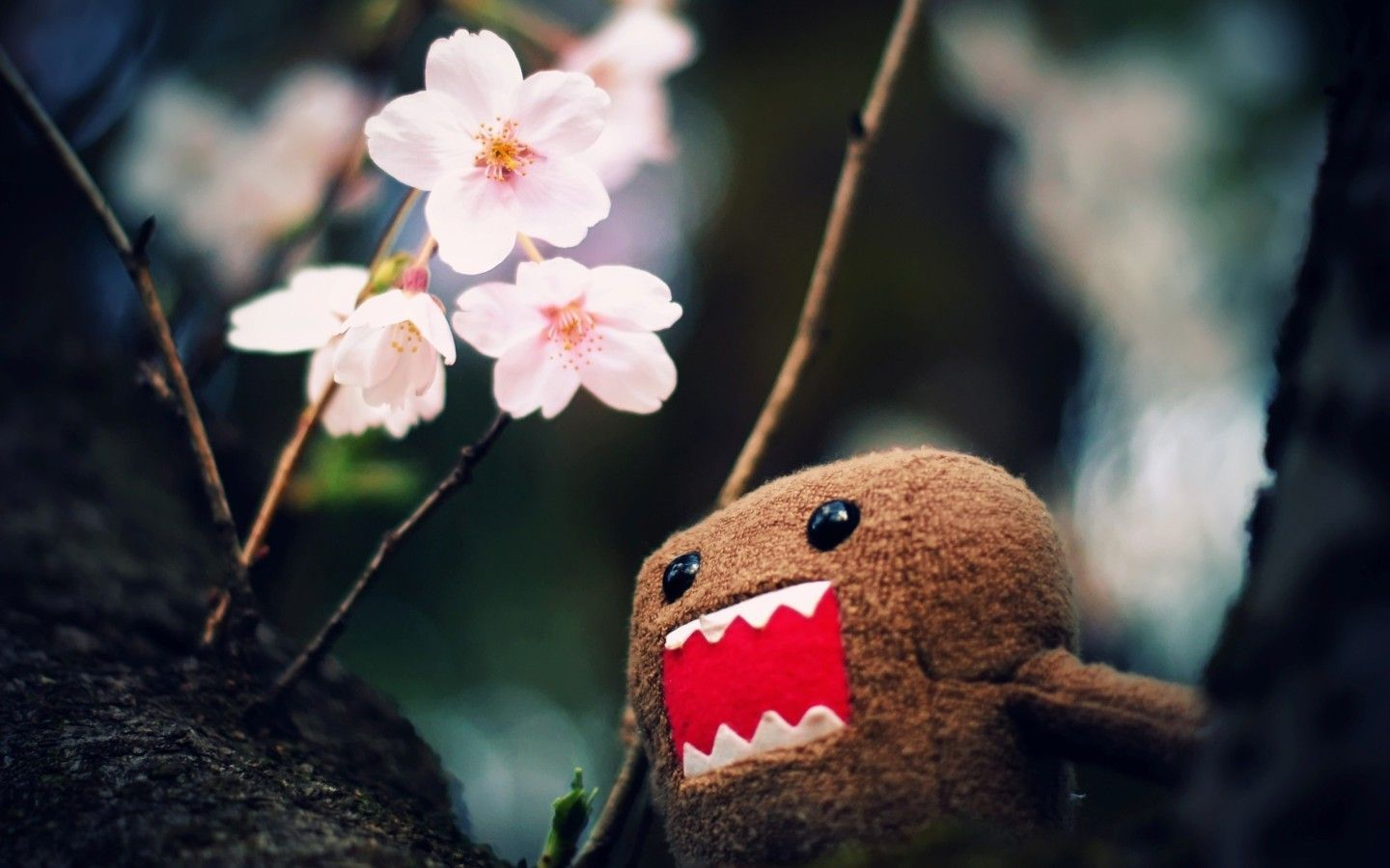 Download Cute Domo Wallpaper