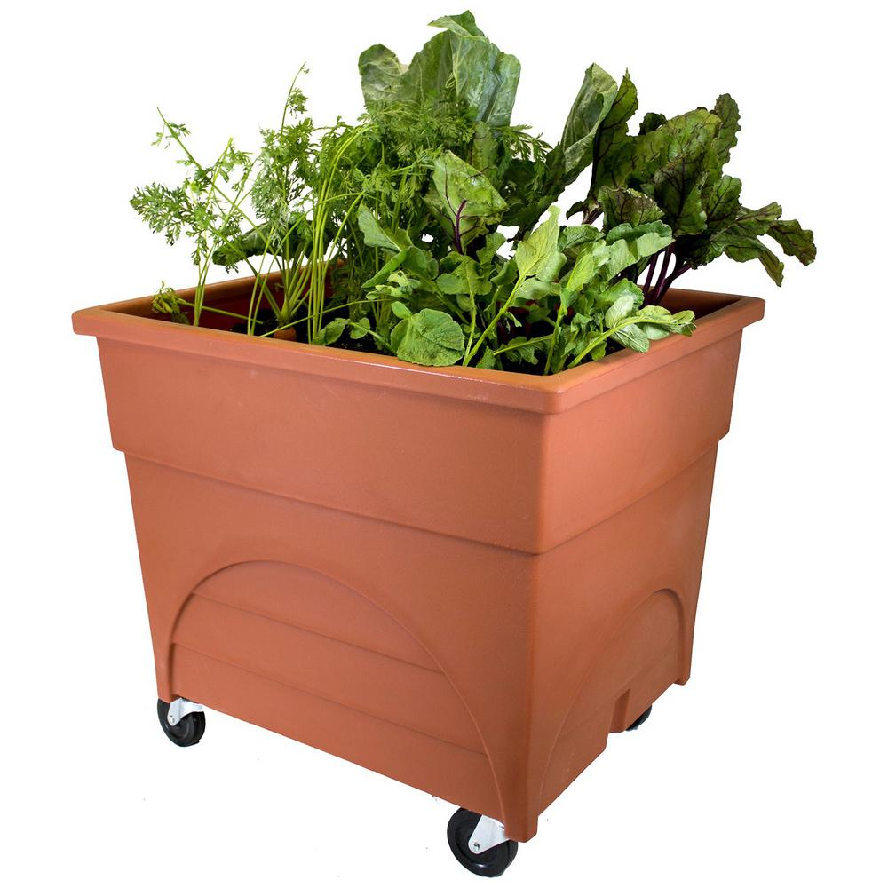 City Pickers Root Picker Raised Bed Vegetable Grow Box In Terra Cotta Red With Casters