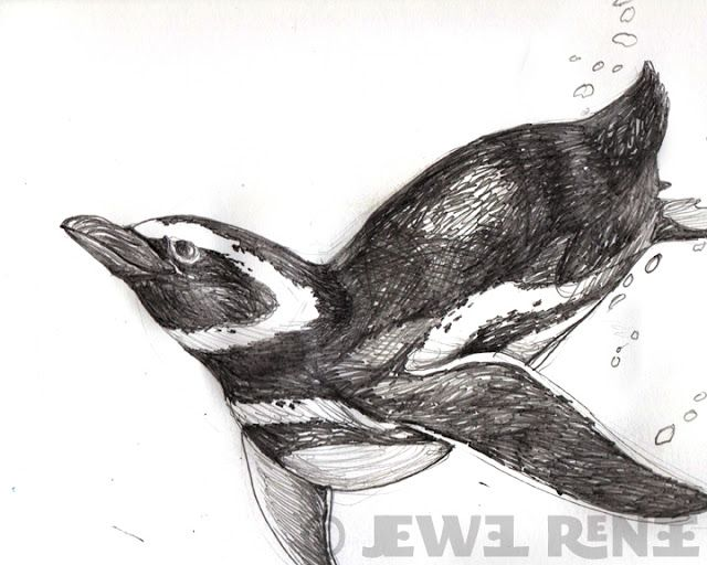 Jewel Renee Illustration: Penguin Pencil Drawing