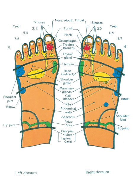 Check Your Pressure Points Uppercrustindia Pressure Points Reflexology Pressure Points Foot Reflexology Massage