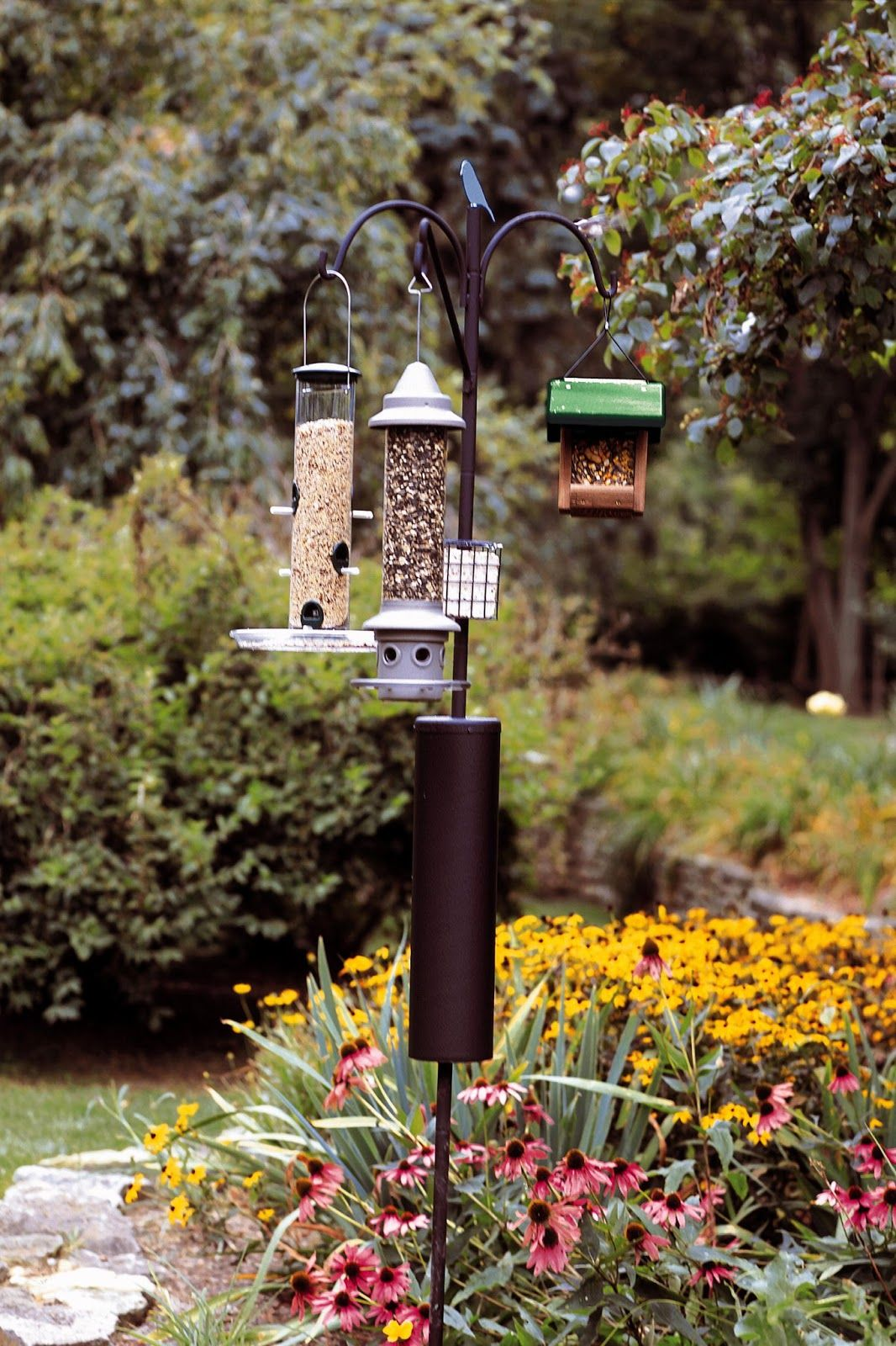 wooden squirel full bird feeder woodpecker proof drinkers original cool absolute and feeders for image poles fancy birds wood unlimited wild with