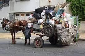 Petition · H. Ayuntamiento de Xalapa, Veracruz: Prohibit the use of horse-drawn carts to collect garbage in the city of Xalapa and its periphery · Change.org