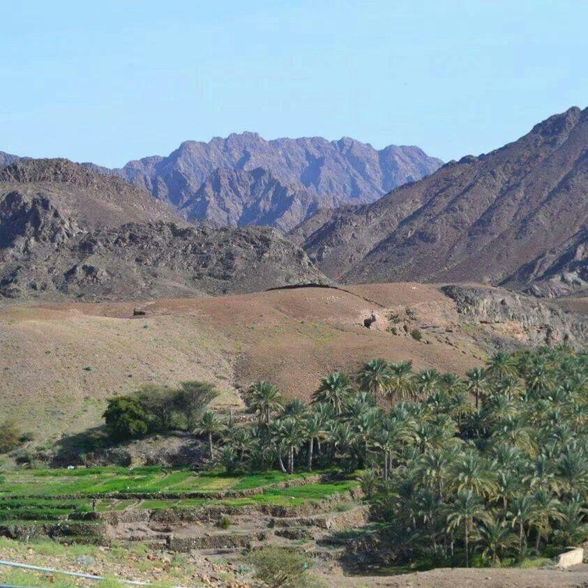 Wadi Al Hwasina - Oman
