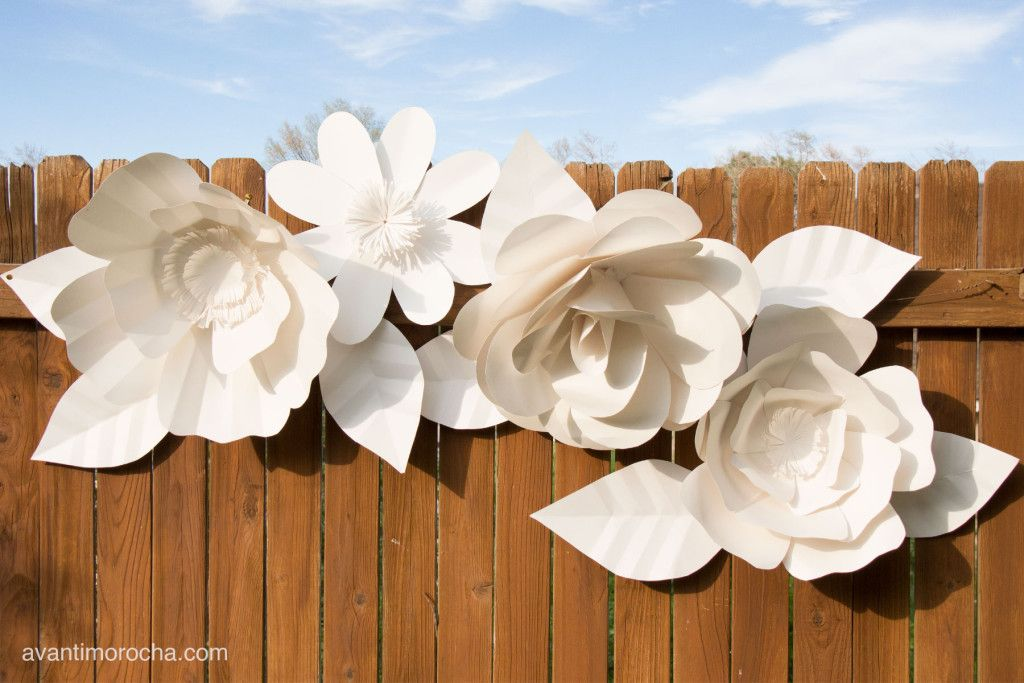 Diy giant daisy how to make a giant flower backdrop diy diy giant daisy how to make a giant flower backdrop paper flowers mightylinksfo Choice Image