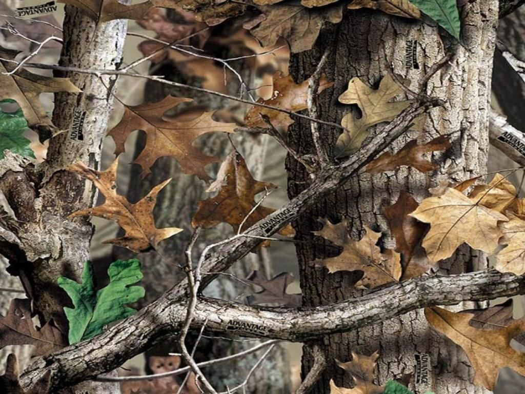 realtree wallpapers for iphone 4