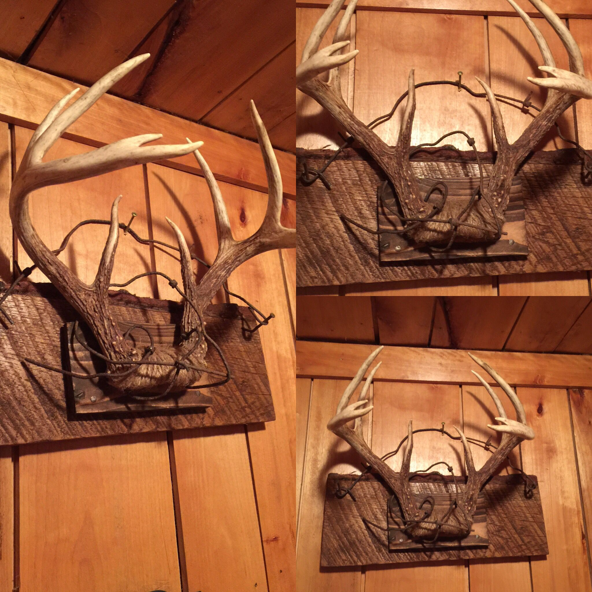 Ruff Lumber Antler Mount Jupe Rope Old Fence Easy Way To Make Rustic Pretty And Cheap Antler Mount Diy Deer Antler Decor Deer Hunting Decor Antlers Decor