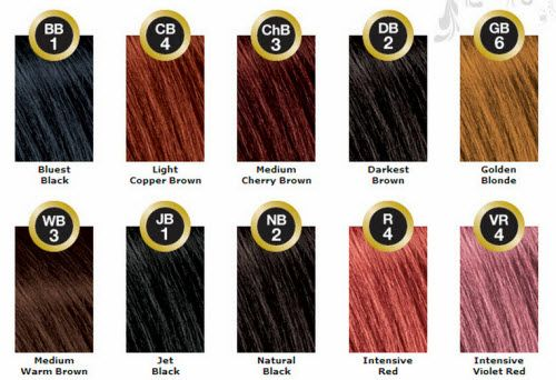 Paul Mitchell Bigen Color Chart Bigen Hair Color Hair Color