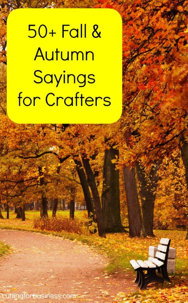 50+ Fall Sayings for Crafters & DIY Projects Fall