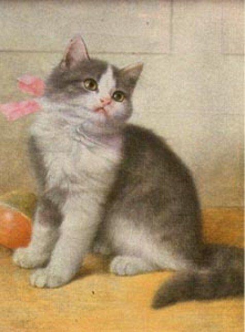 Wilhelm Schwar (1860-1943, German) #whitekittens Grey and White Kitten, Wilhelm Schwar #whitekittens