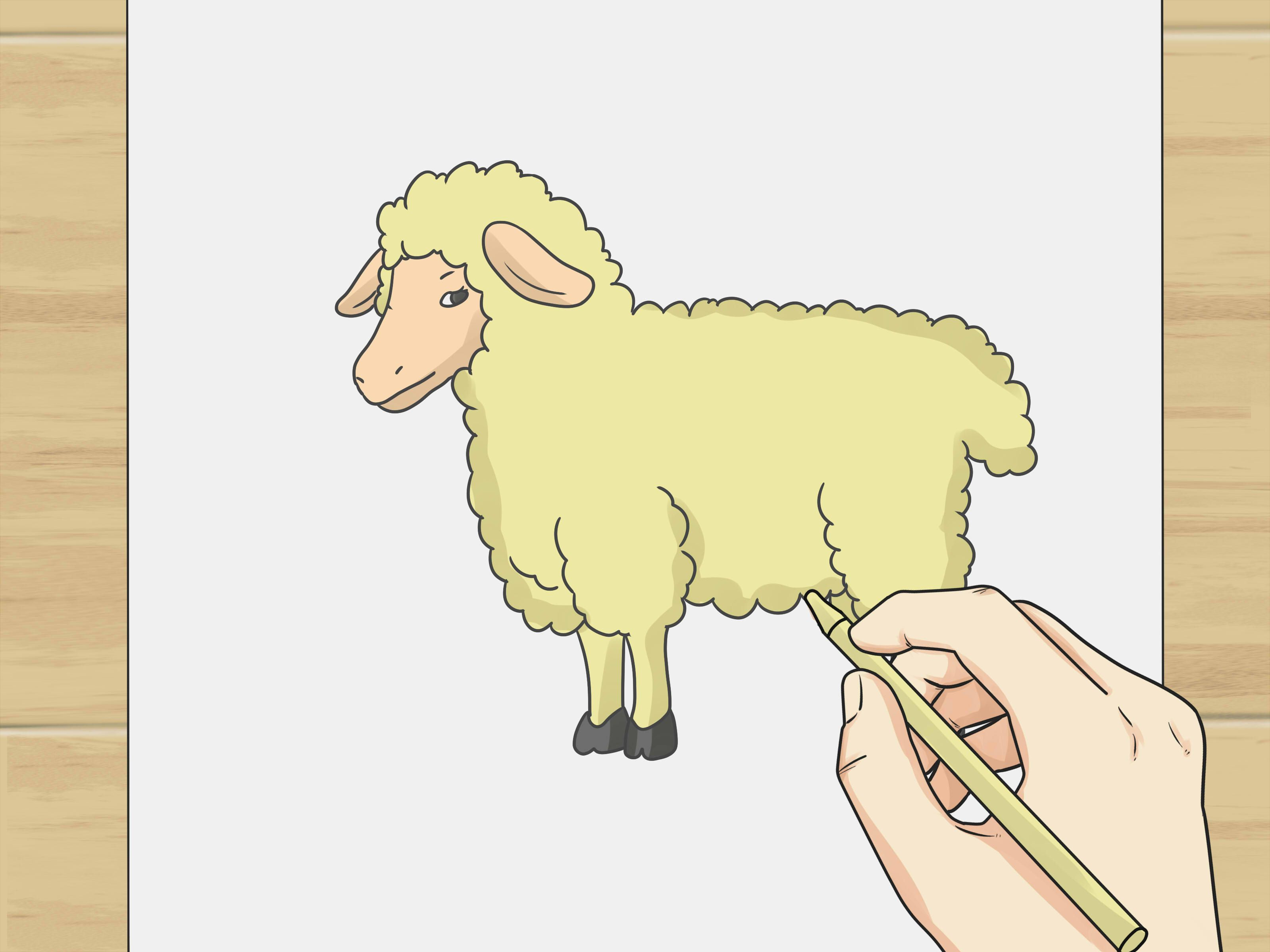 Almost Everyone Has Tried Counting Sheep In Order To Fall Asleep Follow  This Tutorial To