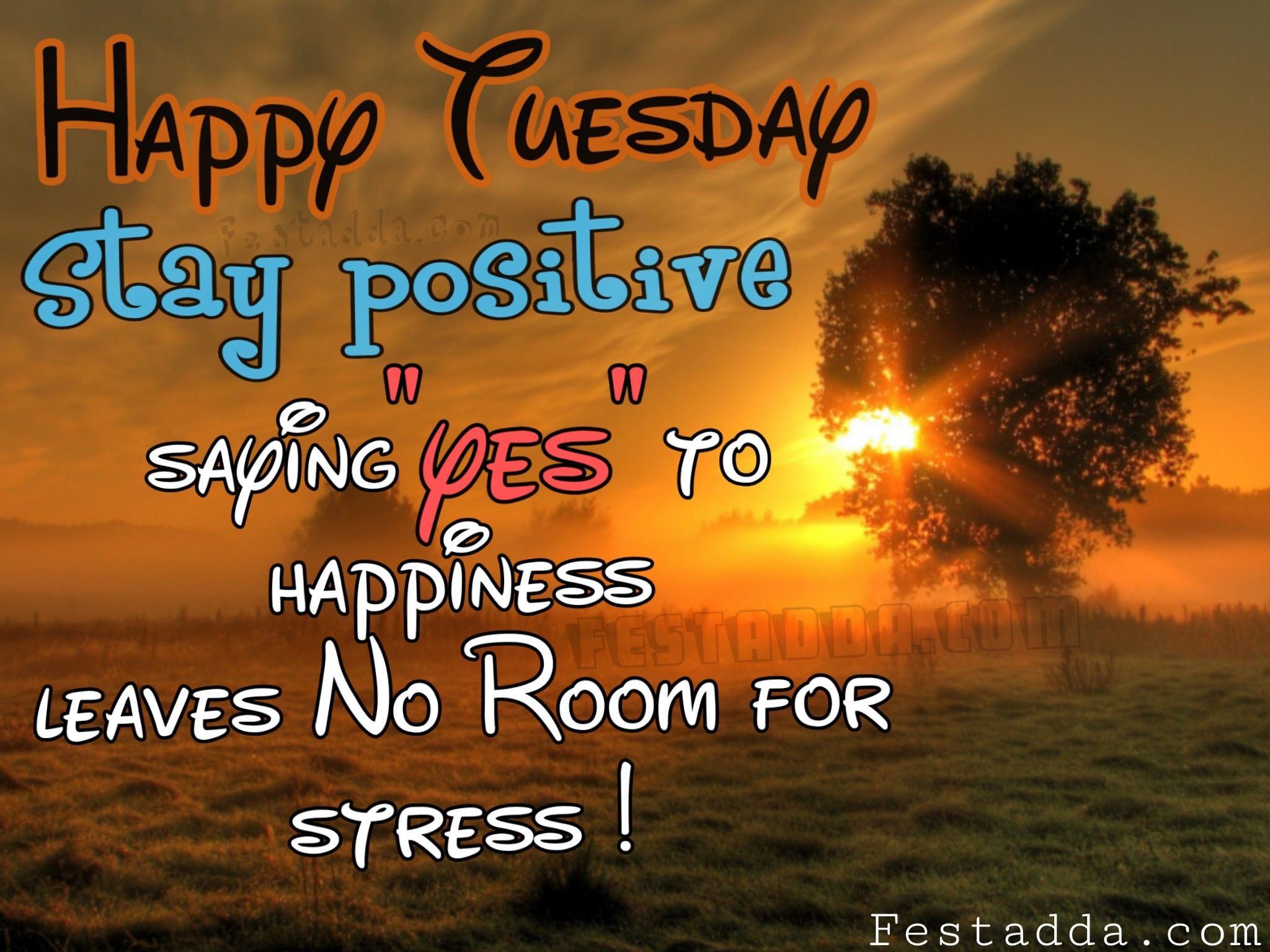 Happy Tuesday Images GIF Clipart Meme Flowers For Whatsapp