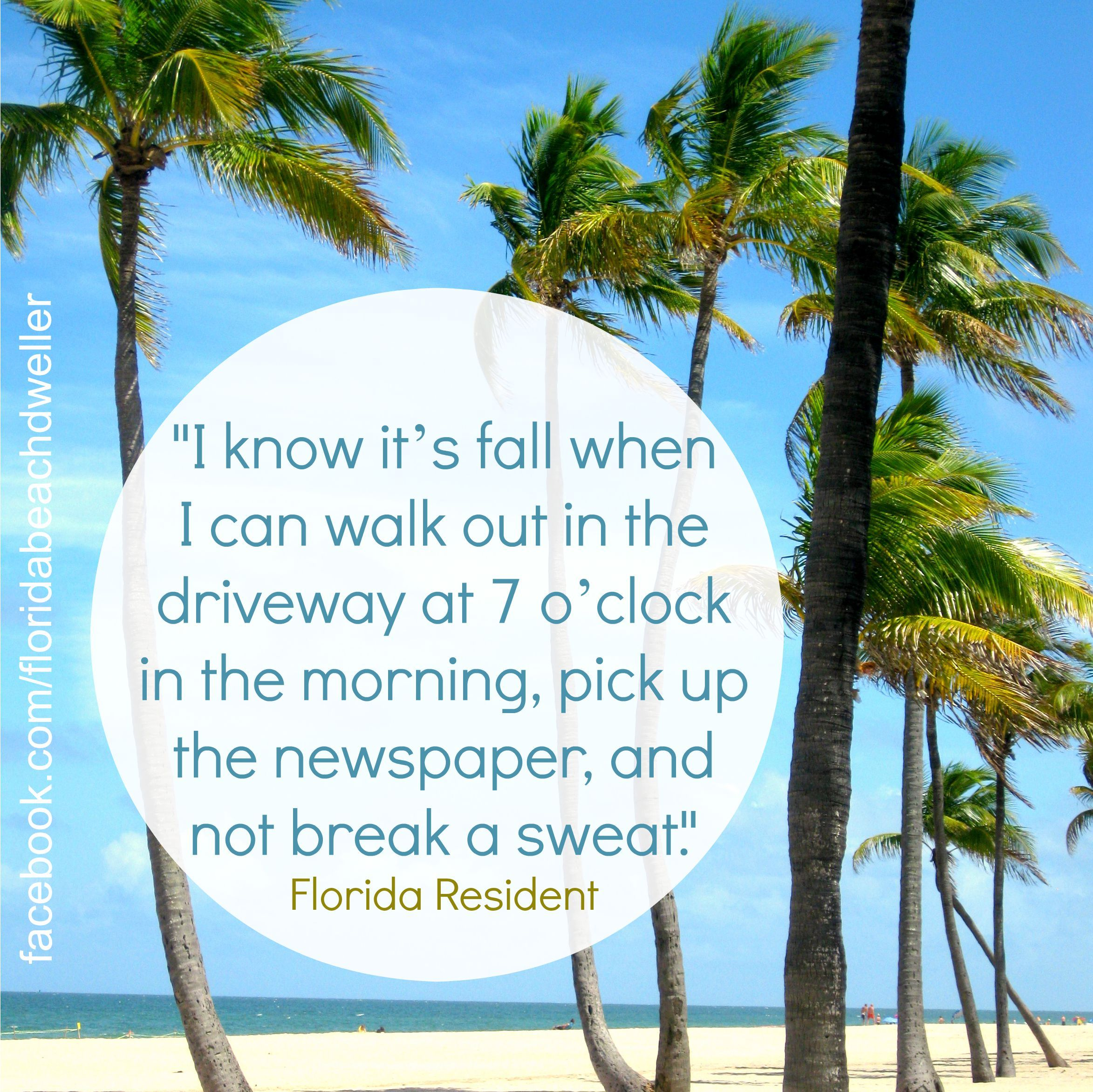 Quotes About Florida Awesome Florida Fall Quote Httpswww.pinterestfloridabeachdw Sign . Inspiration Design